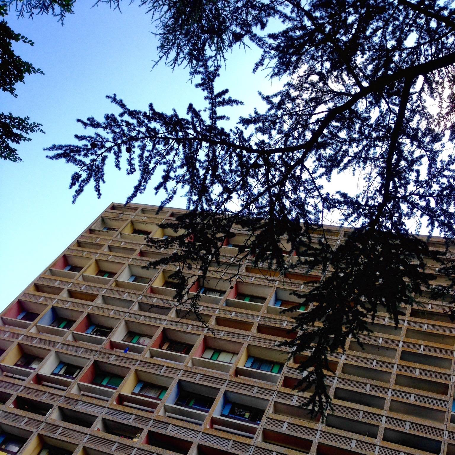 Une seconde vue qui met en évidence les balcons ; avec une branche au premier plan.